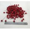 Купить декоративные ягоды 8 мм в Минске