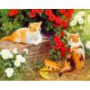 "Картина по номерам ""Котята в саду"" 40х50 см"