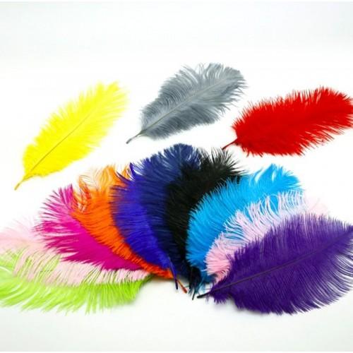 Купить перо крашеное 20 х 7 см в Минске.